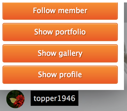 follow-member-button.png