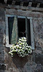Venice_The_Window.jpg