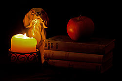 Reading-by-Candlelight1.jpg