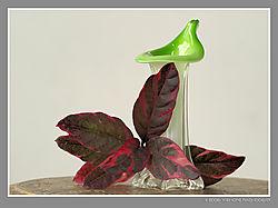 Red_leaves_Green_vase.jpg
