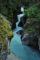 Avalanche-Creek8.jpg