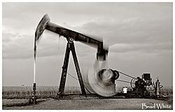 Oil_Field_nik.jpg