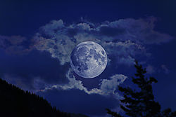 Moon_at_Night-2-flattened.jpg