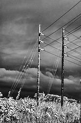 POWER_LINES_1298.jpg