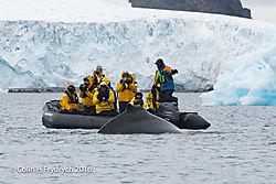 247_2016-01-20_Antarctica_Humpback_Whales_Yankee_Harbour_D750_CFP2104flickr.jpg