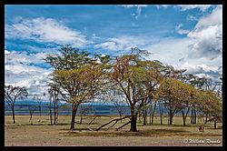 Lake_Nakuru_a_scenic_2.jpg