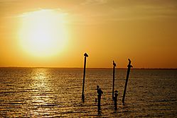 Sunset_final8.jpg