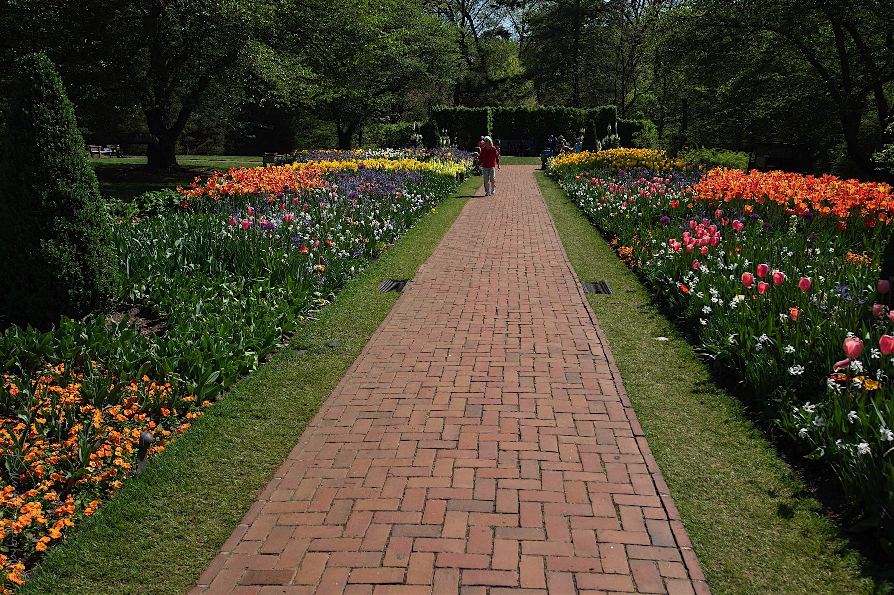 Longwood Gardens | Nikonians