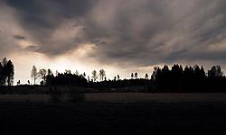 20090504-A_Forest_Silhouette_Before_Rain.jpg
