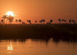 Africa_2015_D-750B_397_sunset_at_Duma_Tau_5x7.jpg
