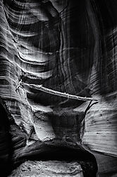 Antelope_Canyon_Log_1.jpg