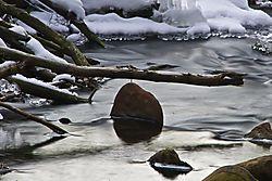 Beaver_Dam_-_Yankeetown_Pond_2010-01-10.jpg