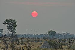 Botswanan_Sunset.jpeg