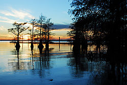 Caddo_Lake_Sunset.jpg