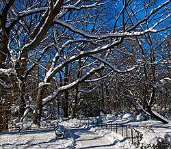 Central_Park_and_Snow_Storm.jpg