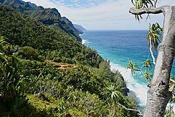 Coastal_View_s.jpg