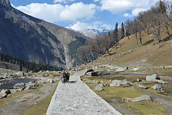 Country_road_take_me_home-Sonmarg.jpg