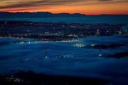 Cypress_Foggy_Sunrise_Peter_Owens-6244.jpg