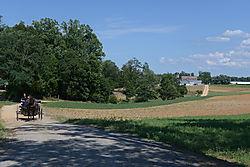 DSC_11656.jpg