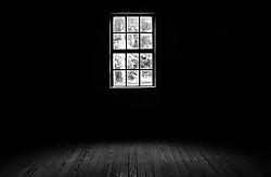 DSC_1345_window_800.jpg