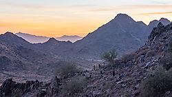 Desert_Dusk2.jpg