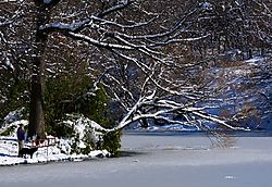 Duck_Pond_Central_Park_and_Snow_Storm.jpg