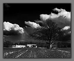 Farm-in-BW.jpg