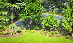 Garden_Rainbow1.jpg