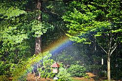 Garden_Rainbow2.jpg