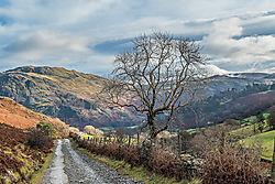 Glenridding_Ullswater.jpg