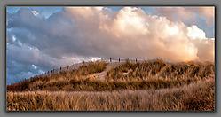 Grass-Dunes.jpg