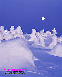 Heavy snow in moonlight