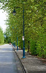 JHW_2600-lamppost-row_017.JPG