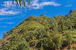 Kailua_Peak.jpg