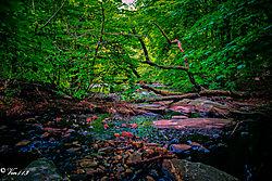 Mill_Creek_2.jpg