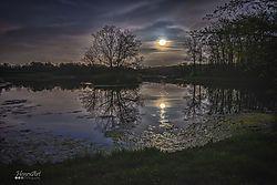 Moonpic2.jpg