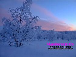 Northern_nature00016.jpg