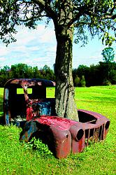 OldTruck-Tree.jpg