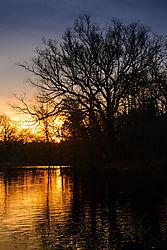 Prospect_Park_Sunrise_2-1.jpg