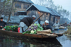 Vegetable_Market-Dal_Lake.jpg