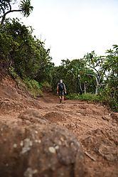Vertical_trail.jpg