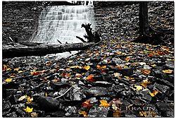 Washboard_Falls_-_Fall.jpg