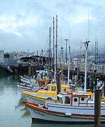 WharfBoats1_sm.jpg