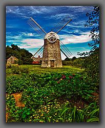 Windmill-1.jpg
