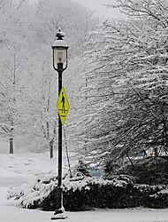 Winter-Sign.jpg