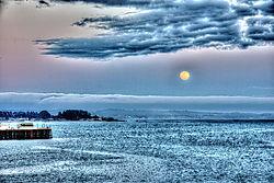 moonrise6.jpg