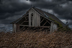 untitled141005-7538-Edit.jpg