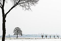 winterlandschap-kl.jpg