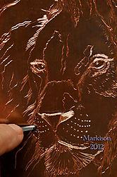 LionEngravingJustAddWhiskers1000pxMarkison2012signed.jpg