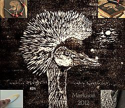 MoonlitGreyCrownedCraneWoodEngravingMarkison2012Proof1_1000px.jpg